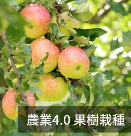 農業4.0 果樹栽種─屏東科技大學